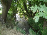 Ο Ρήχειος ποταμός